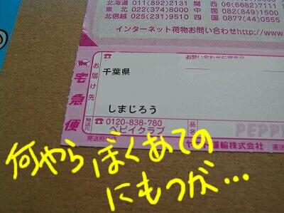 s-P5014815.jpg